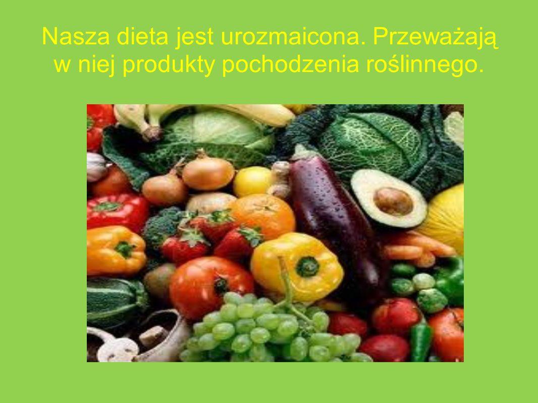Nasza dieta jest urozmaicona. Przeważają w niej produkty pochodzenia roślinnego.