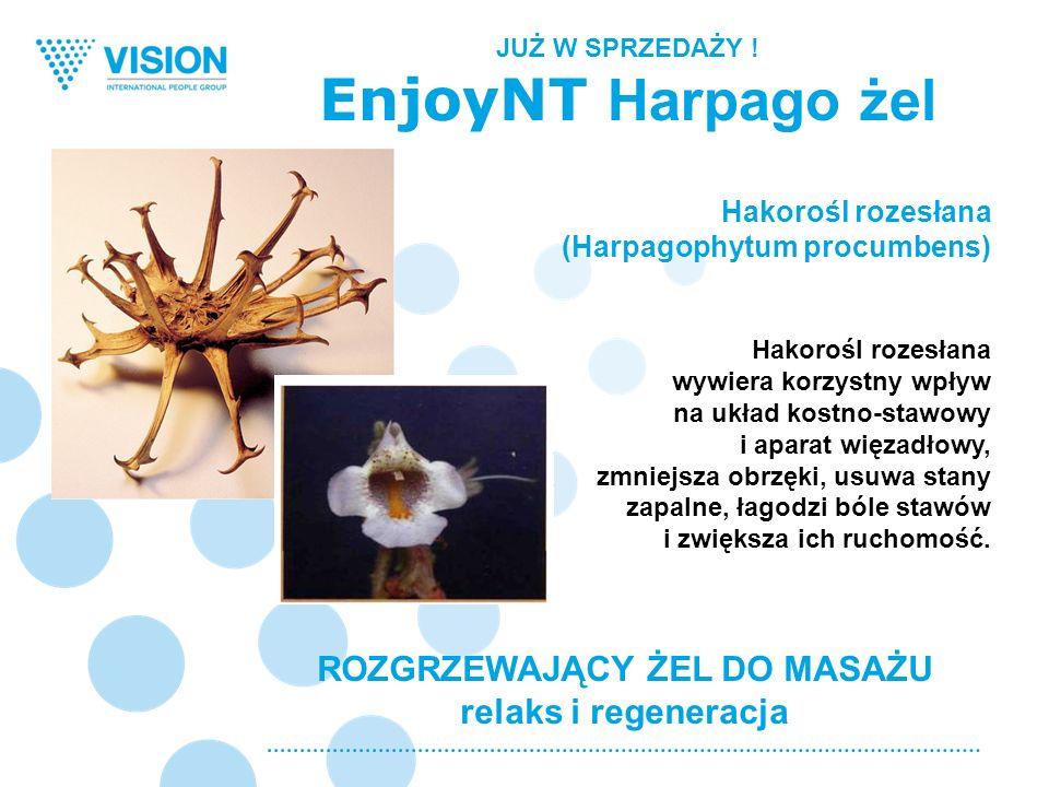 ROZGRZEWAJĄCY ŻEL DO MASAŻU relaks i regeneracja Hakorośl rozesłana (Harpagophytum procumbens) Hakorośl rozesłana wywiera korzystny wpływ na układ kos