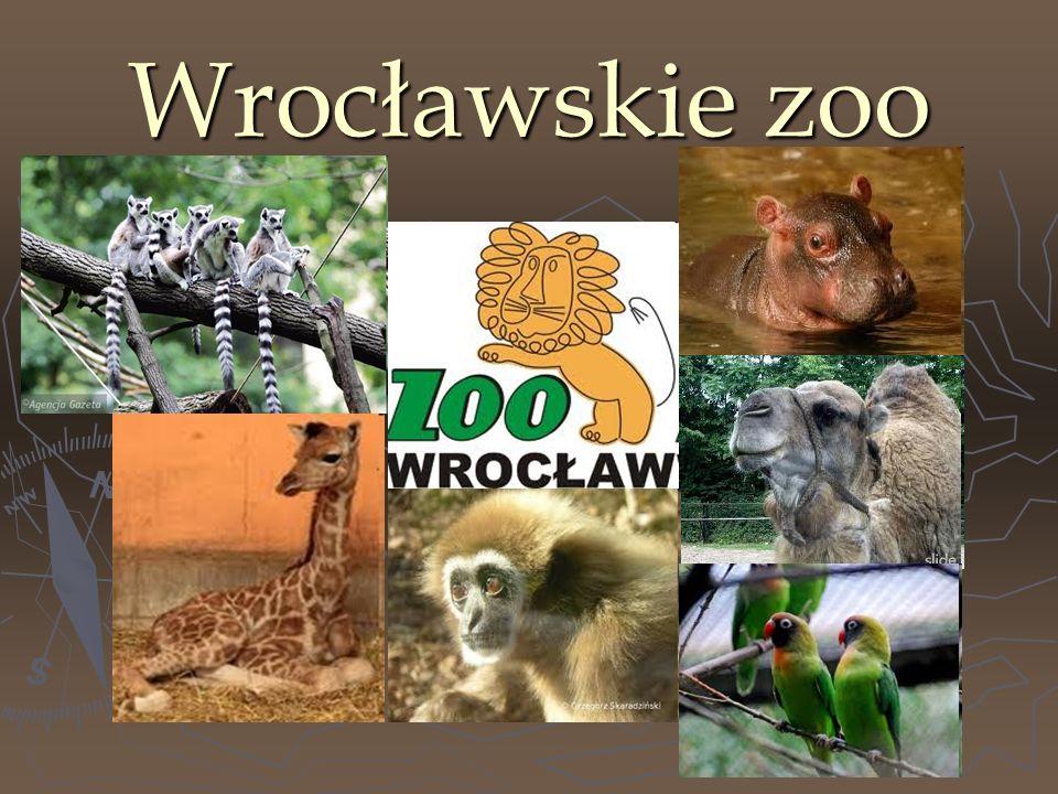 Wrocławskie zoo jest najstarsze w Polsce.