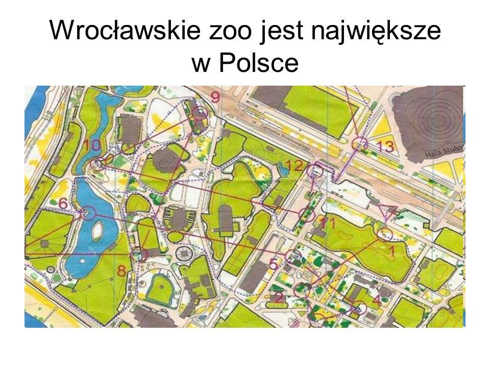 Powierzchnia : 33 hektary, o k. 7000 zwierząt, 800 gatunków.