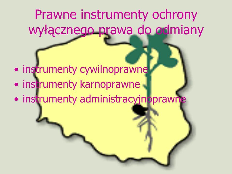 Prawne instrumenty ochrony wyłącznego prawa do odmiany instrumenty cywilnoprawne instrumenty karnoprawne instrumenty administracyjnoprawne