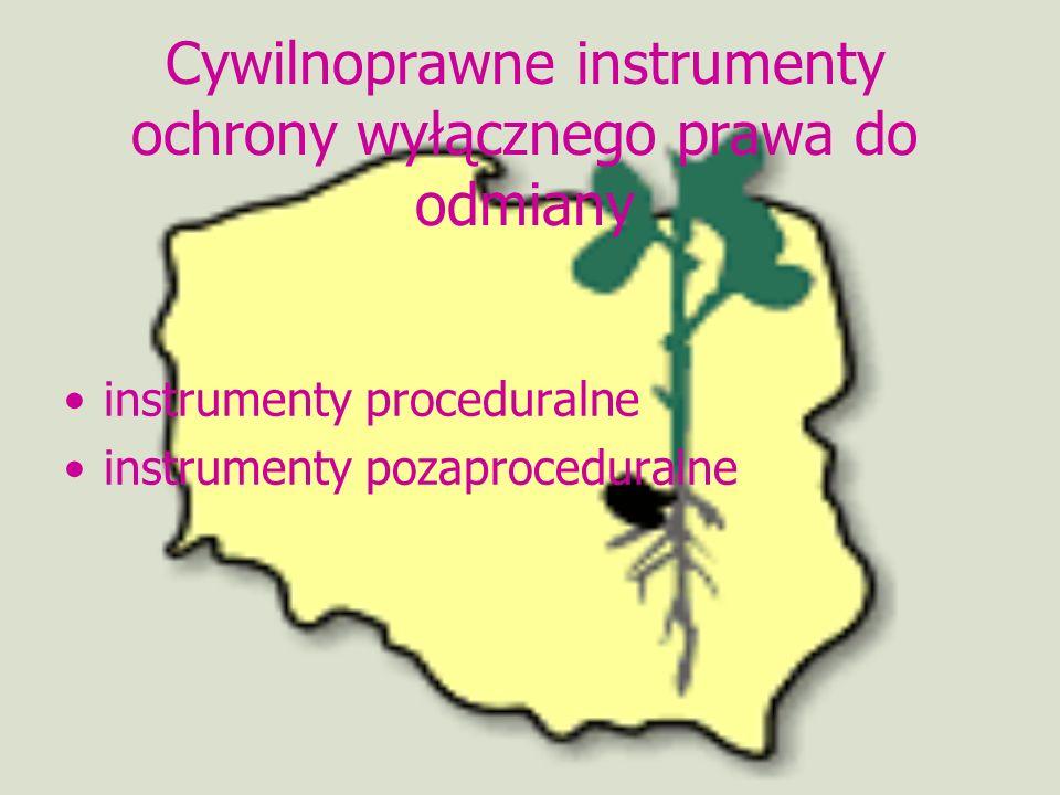 Cywilnoprawne instrumenty ochrony wyłącznego prawa do odmiany instrumenty proceduralne instrumenty pozaproceduralne