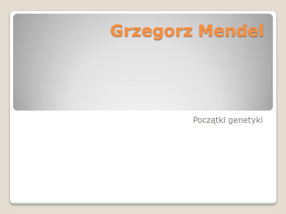 Grzegorz Mendel Grzegorz Mendel Początki genetyki
