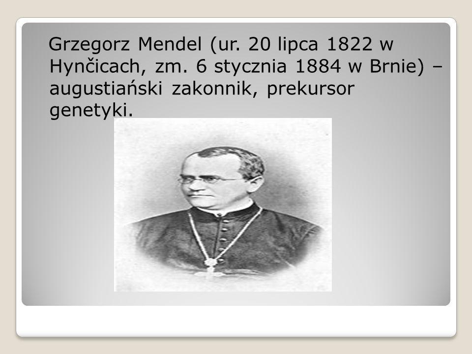 Grzegorz Mendel (ur. 20 lipca 1822 w Hynčicach, zm. 6 stycznia 1884 w Brnie) – augustiański zakonnik, prekursor genetyki.