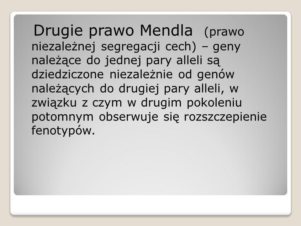 Drugie prawo Mendla (prawo niezależnej segregacji cech) – geny należące do jednej pary alleli są dziedziczone niezależnie od genów należących do drugi