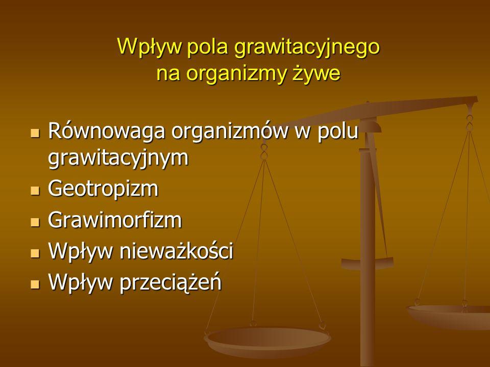 Wpływ pola grawitacyjnego na organizmy żywe Równowaga organizmów w polu grawitacyjnym Równowaga organizmów w polu grawitacyjnym Geotropizm Geotropizm