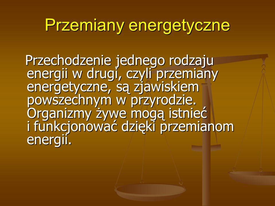 Przemiany energetyczne Przechodzenie jednego rodzaju energii w drugi, czyli przemiany energetyczne, są zjawiskiem powszechnym w przyrodzie. Organizmy