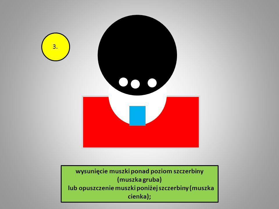 2. wysunięcie muszki ponad poziom szczerbiny (muszka gruba) lub opuszczenie muszki poniżej szczerbiny (muszka cienka);