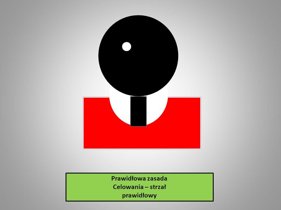 Przy strzelaniu z prawidłowo przystrzelonego kbks punktem celowania jest środek dolnej krawędzi czarnego koła sportowej tarczy strzeleckiej.