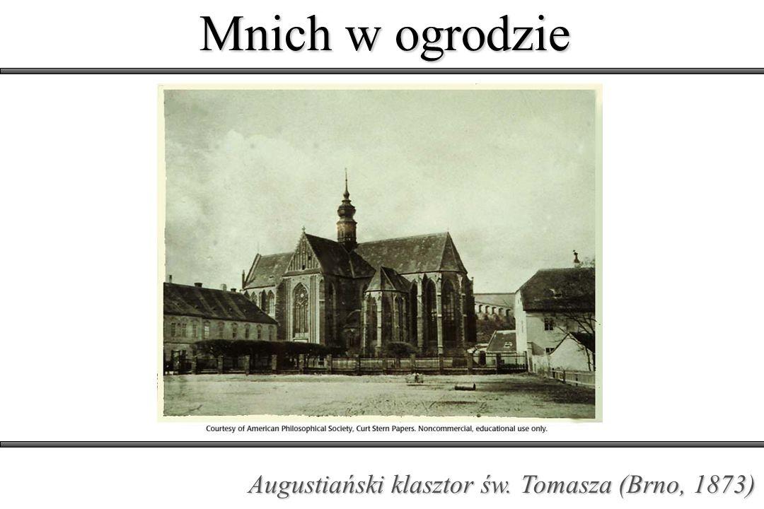 Mnich w ogrodzie Opat klasztoru św. Tomasza w Brnie (30.03.1868)