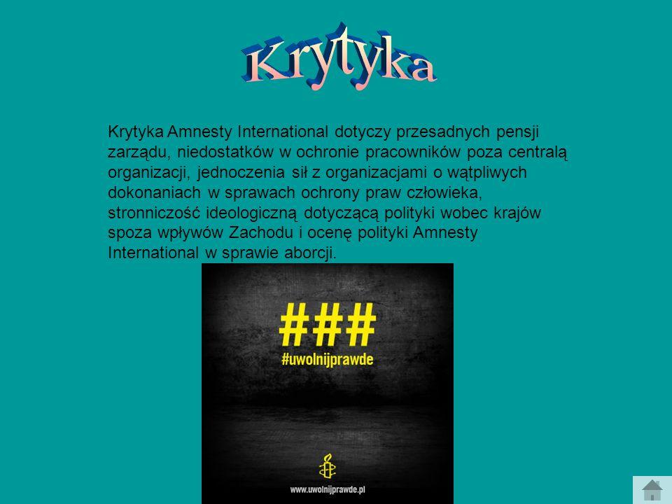 Krytyka Amnesty International dotyczy przesadnych pensji zarządu, niedostatków w ochronie pracowników poza centralą organizacji, jednoczenia sił z org