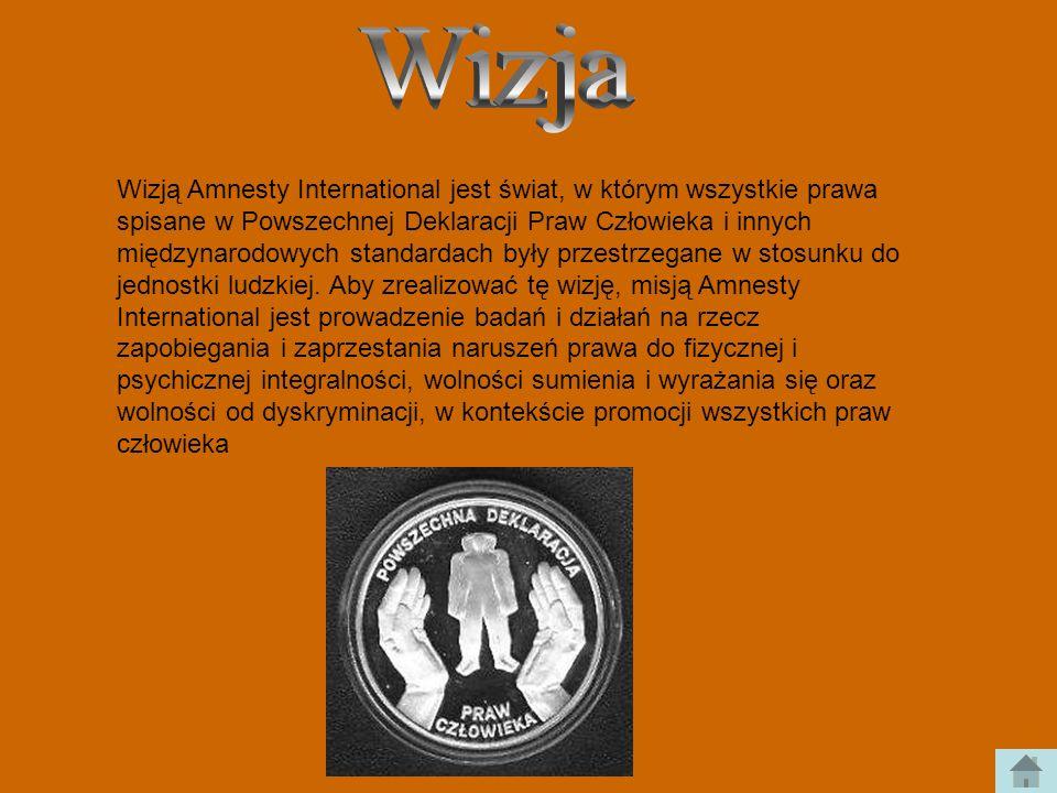 Wizją Amnesty International jest świat, w którym wszystkie prawa spisane w Powszechnej Deklaracji Praw Człowieka i innych międzynarodowych standardach