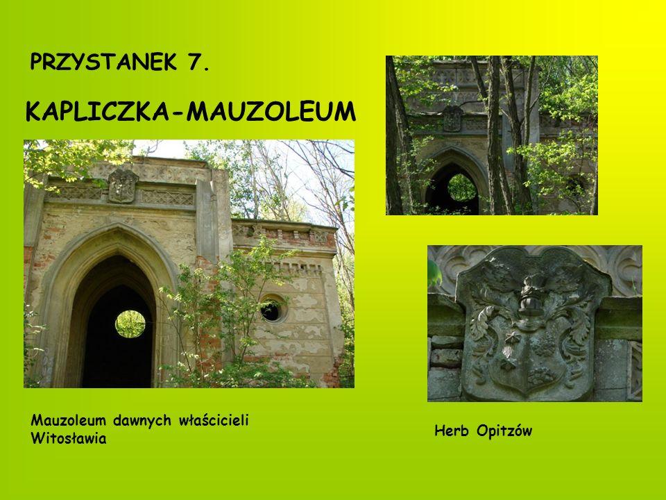 PRZYSTANEK 8. WITOSŁAW Pałac Kompleks pałacowy w parku Aleja parkowa Pomniki przyrody dęby i platan