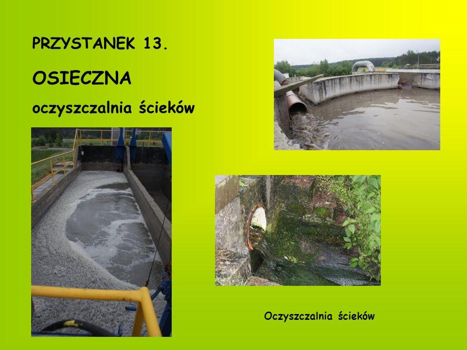 Herb miasta Osieckie wiatraki PRZYSTANEK 14. OSIECZNA