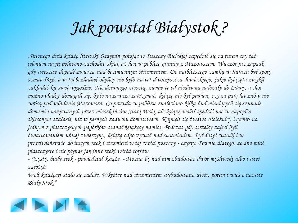 Jak powstał Białystok ? Pewnego dnia książę litewski Gedymin polując w Puszczy Bielskiej zapędził się za turem czy też jeleniem na jej pólnocno-zachod