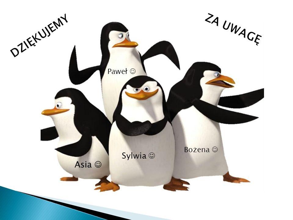 Sylwia Paweł Bożena DZIĘKUJEMY ZA UWAGĘ