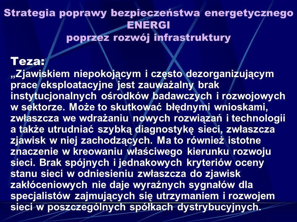 Strategia poprawy bezpieczeństwa energetycznego ENERGI poprzez rozwój infrastruktury Teza: Zjawiskiem niepokojącym i często dezorganizującym prace eksploatacyjne jest zauważalny brak instytucjonalnych ośrodków badawczych i rozwojowych w sektorze.