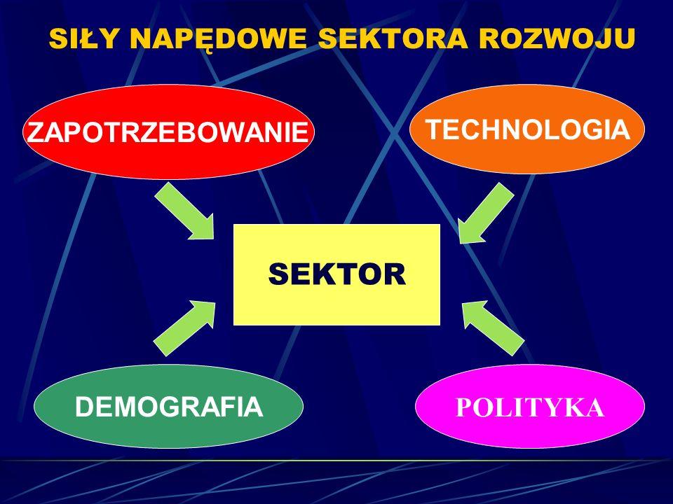 SIŁY NAPĘDOWE SEKTORA ROZWOJU ZAPOTRZEBOWANIE TECHNOLOGIA SEKTOR DEMOGRAFIA POLITYKA