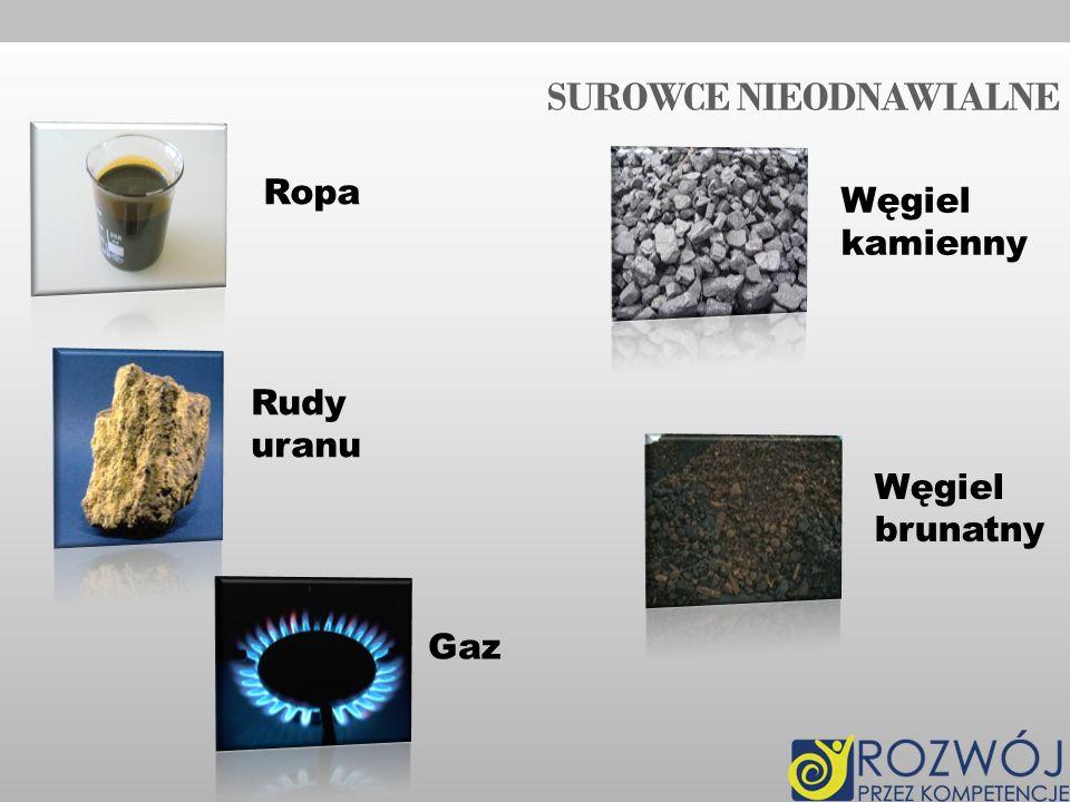 SUROWCE NIEODNAWIALNE Ropa Rudy uranu Gaz Węgiel kamienny Węgiel brunatny