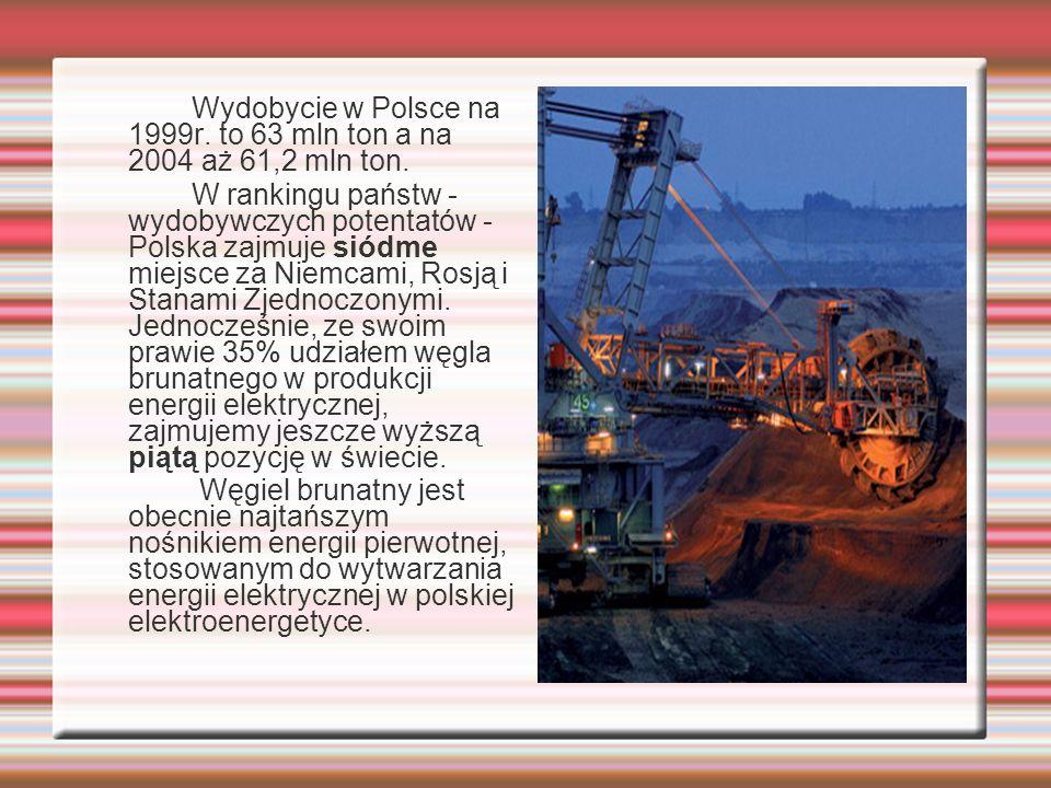 Wydobycie w Polsce na 1999r. to 63 mln ton a na 2004 aż 61,2 mln ton. W rankingu państw - wydobywczych potentatów - Polska zajmuje siódme miejsce za N