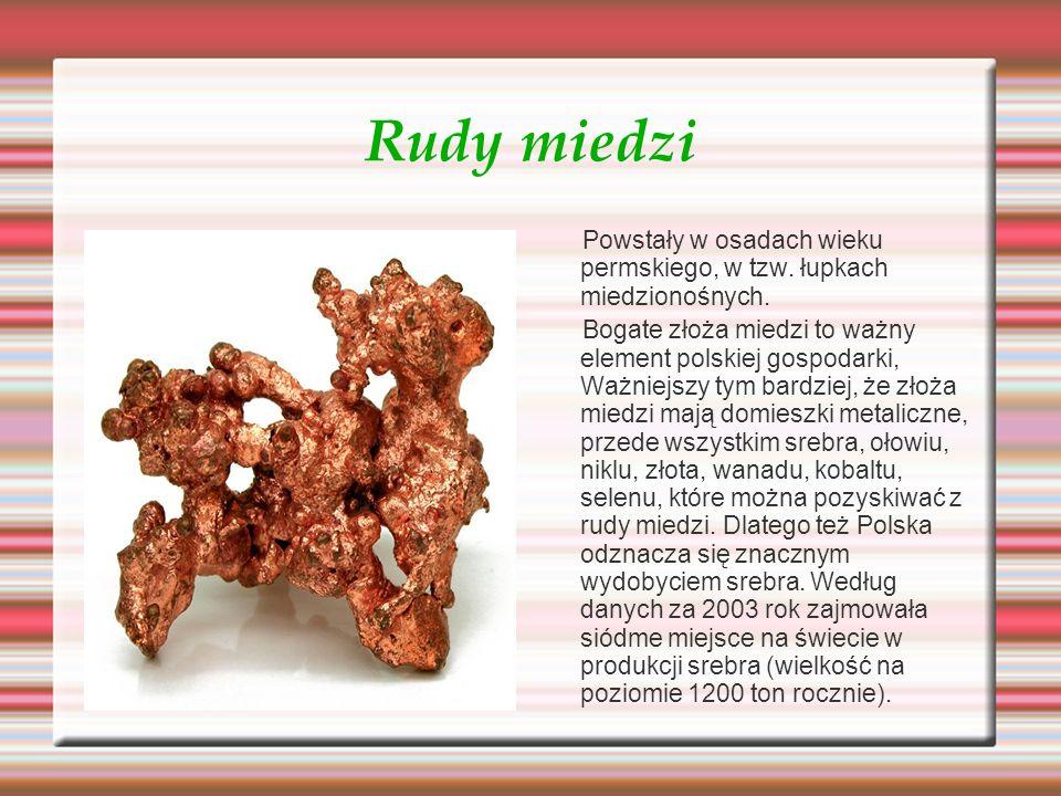 Rudy miedzi Powstały w osadach wieku permskiego, w tzw. łupkach miedzionośnych. Bogate złoża miedzi to ważny element polskiej gospodarki, Ważniejszy t