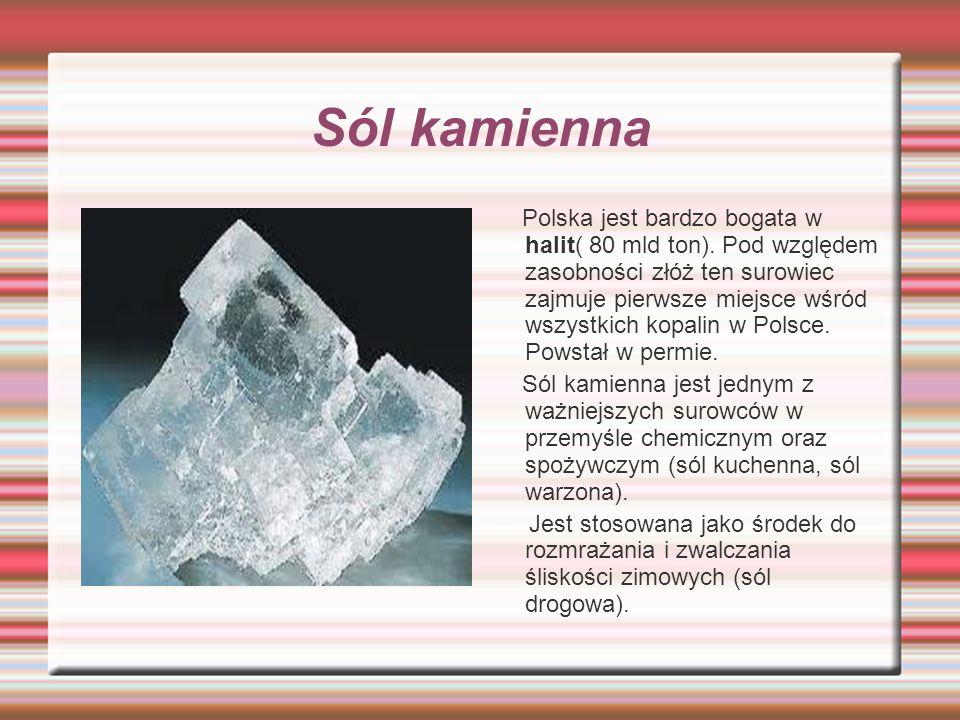 Sól kamienna Polska jest bardzo bogata w halit( 80 mld ton). Pod względem zasobności złóż ten surowiec zajmuje pierwsze miejsce wśród wszystkich kopal
