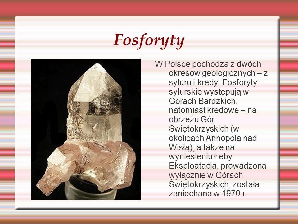 Fosforyty W Polsce pochodzą z dwóch okresów geologicznych – z syluru i kredy. Fosforyty sylurskie występują w Górach Bardzkich, natomiast kredowe – na