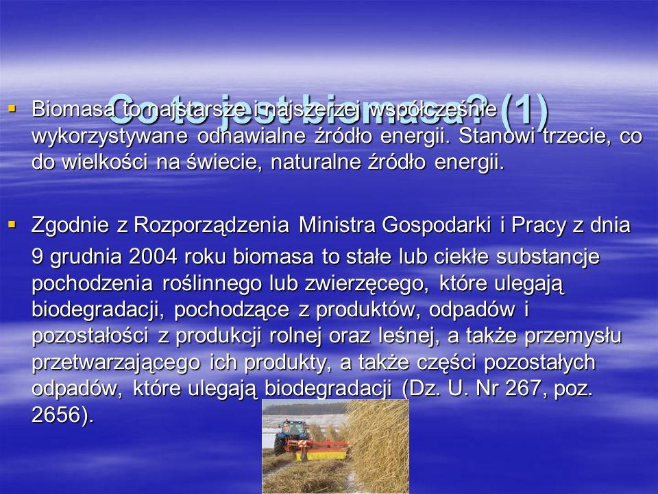 Co to jest biomasa.