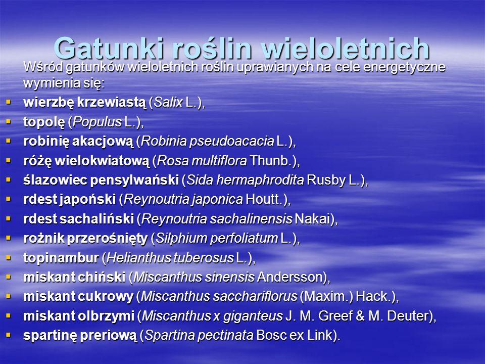 Gatunki roślin wieloletnich Wśród gatunków wieloletnich roślin uprawianych na cele energetyczne wymienia się: wierzbę krzewiastą (Salix L.), wierzbę krzewiastą (Salix L.), topolę (Populus L.), topolę (Populus L.), robinię akacjową (Robinia pseudoacacia L.), robinię akacjową (Robinia pseudoacacia L.), różę wielokwiatową (Rosa multiflora Thunb.), różę wielokwiatową (Rosa multiflora Thunb.), ślazowiec pensylwański (Sida hermaphrodita Rusby L.), ślazowiec pensylwański (Sida hermaphrodita Rusby L.), rdest japoński (Reynoutria japonica Houtt.), rdest japoński (Reynoutria japonica Houtt.), rdest sachaliński (Reynoutria sachalinensis Nakai), rdest sachaliński (Reynoutria sachalinensis Nakai), rożnik przerośnięty (Silphium perfoliatum L.), rożnik przerośnięty (Silphium perfoliatum L.), topinambur (Helianthus tuberosus L.), topinambur (Helianthus tuberosus L.), miskant chiński (Miscanthus sinensis Andersson), miskant chiński (Miscanthus sinensis Andersson), miskant cukrowy (Miscanthus sacchariflorus (Maxim.) Hack.), miskant cukrowy (Miscanthus sacchariflorus (Maxim.) Hack.), miskant olbrzymi (Miscanthus x giganteus J.