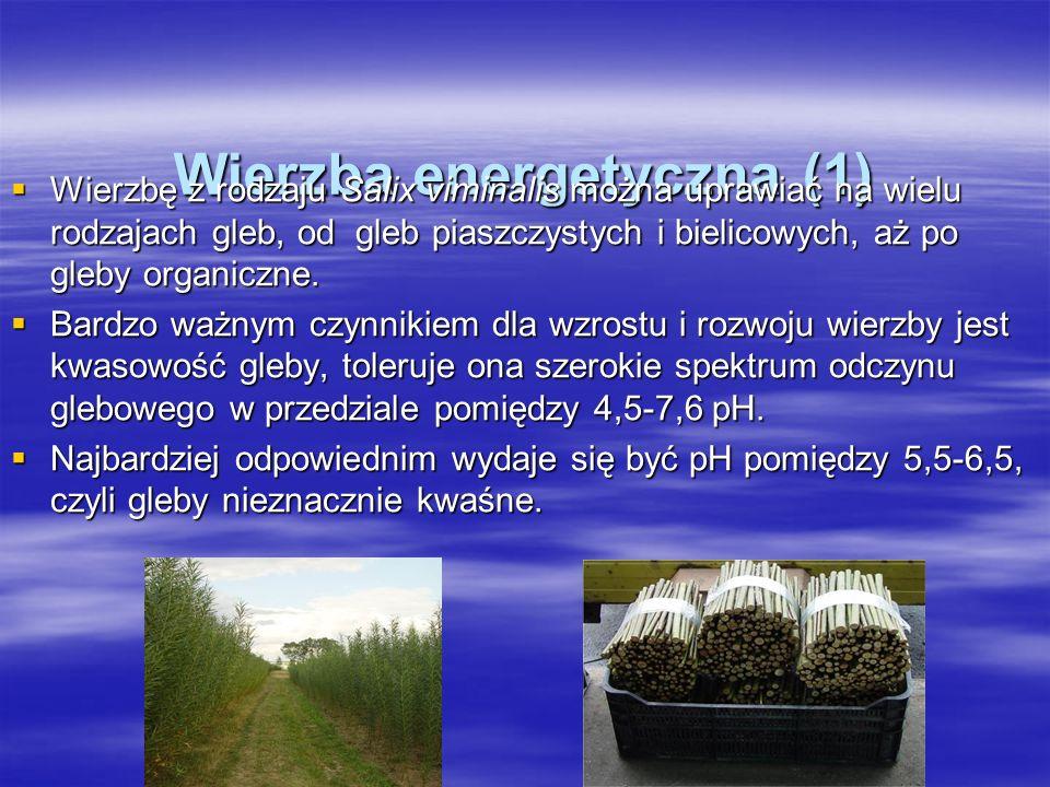 Wierzba energetyczna (1) Wierzbę z rodzaju Salix viminalis można uprawiać na wielu rodzajach gleb, od gleb piaszczystych i bielicowych, aż po gleby organiczne.
