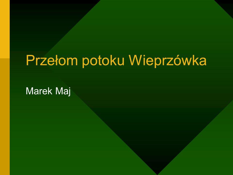Przełom potoku Wieprzówka Marek Maj