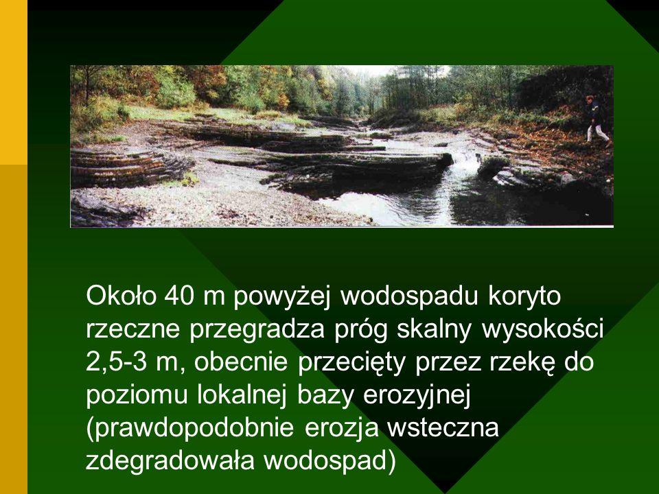 Około 40 m powyżej wodospadu koryto rzeczne przegradza próg skalny wysokości 2,5-3 m, obecnie przecięty przez rzekę do poziomu lokalnej bazy erozyjnej