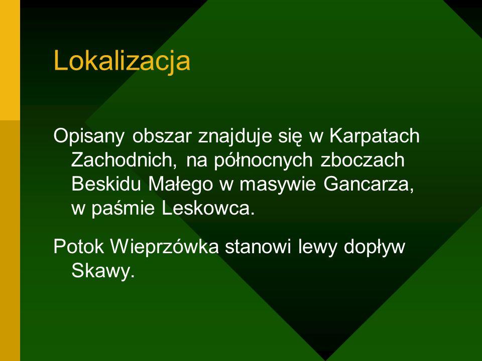 Lokalizacja Opisany obszar znajduje się w Karpatach Zachodnich, na północnych zboczach Beskidu Małego w masywie Gancarza, w paśmie Leskowca. Potok Wie