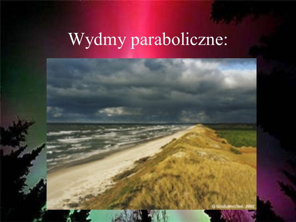 Wydmy paraboliczne: