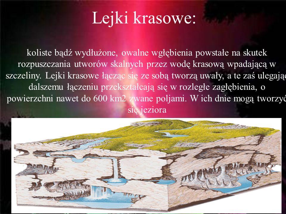 Lejki krasowe: koliste bądź wydłużone, owalne wgłębienia powstałe na skutek rozpuszczania utworów skalnych przez wodę krasową wpadającą w szczeliny. L