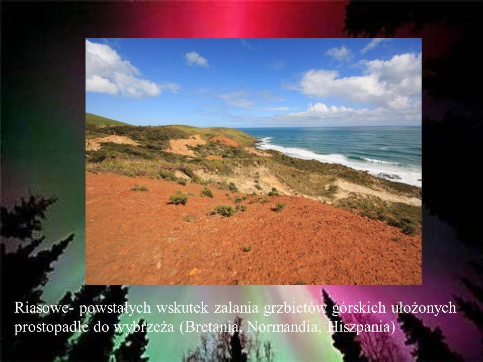 Riasowe- powstałych wskutek zalania grzbietów górskich ułożonych prostopadle do wybrzeża (Bretania, Normandia, Hiszpania)