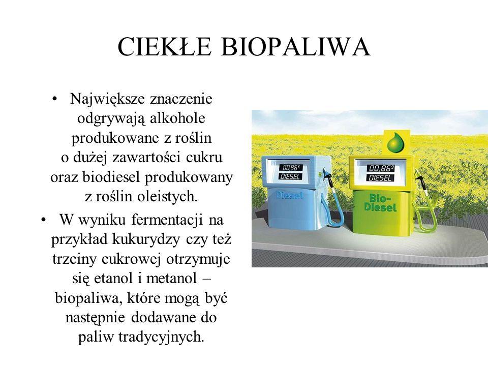 CIEKŁE BIOPALIWA Największe znaczenie odgrywają alkohole produkowane z roślin o dużej zawartości cukru oraz biodiesel produkowany z roślin oleistych.