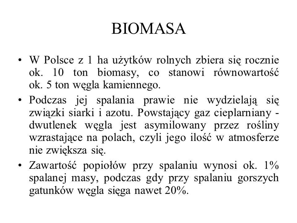 BIOMASA W Polsce z 1 ha użytków rolnych zbiera się rocznie ok.