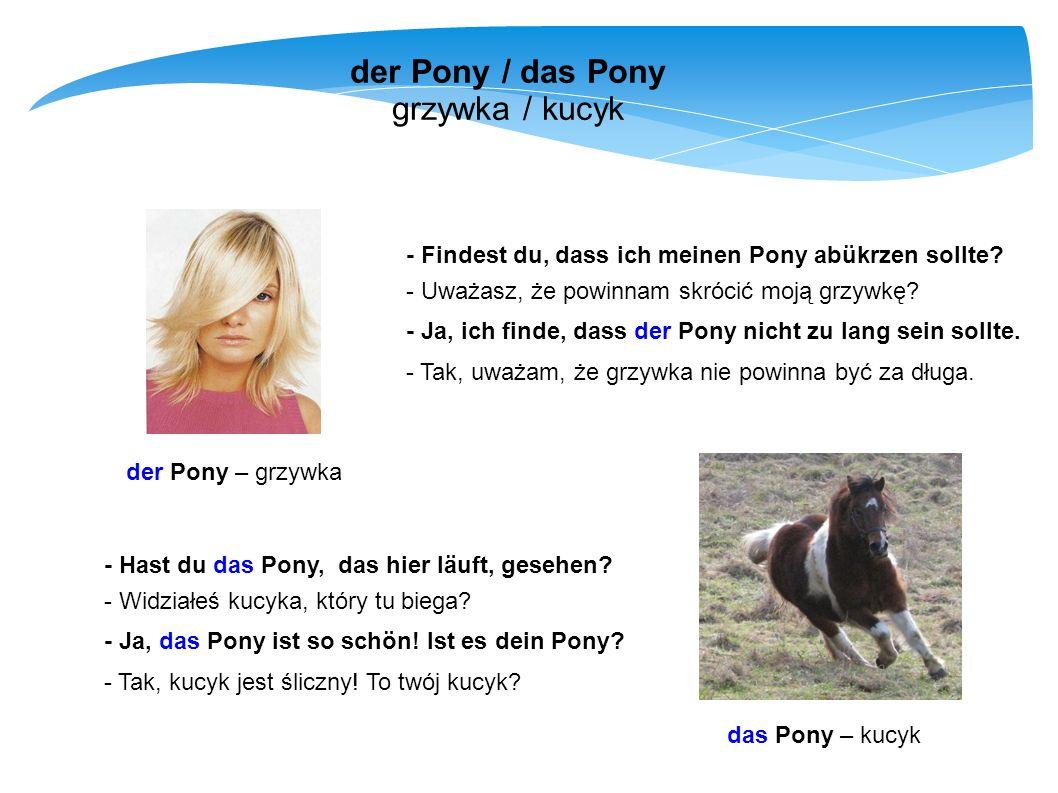 der Pony / das Pony grzywka / kucyk - Findest du, dass ich meinen Pony abükrzen sollte? - Uważasz, że powinnam skrócić moją grzywkę? - Ja, ich finde,