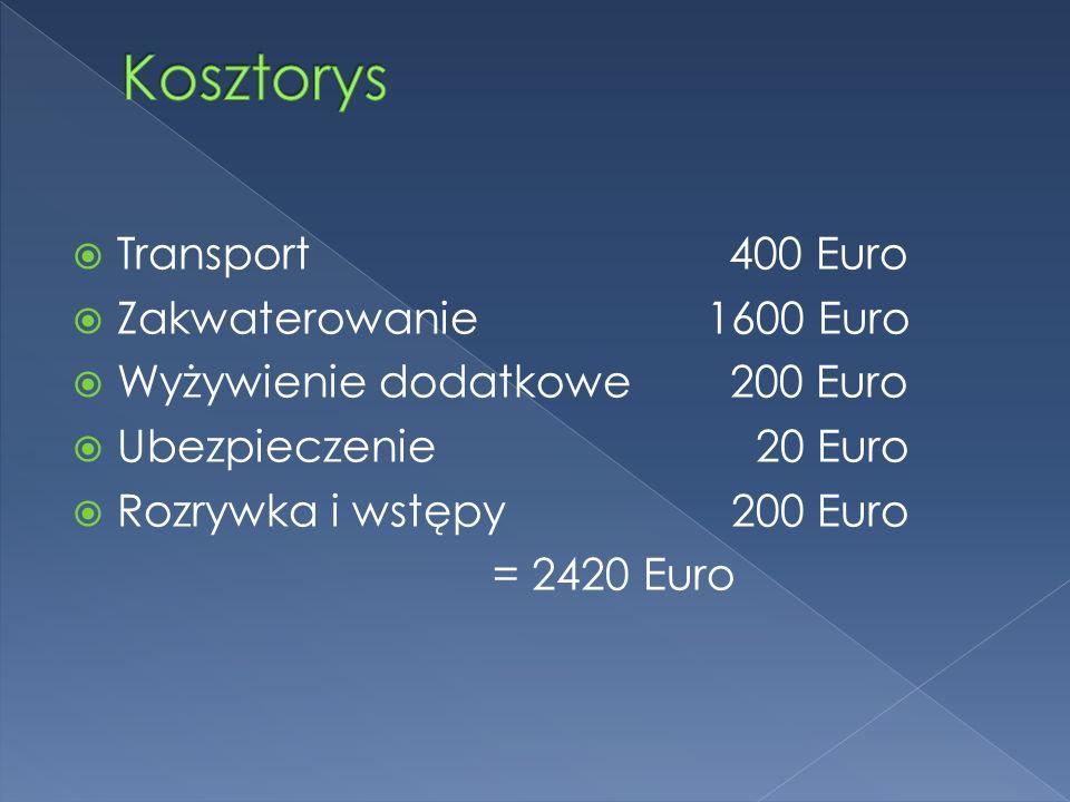 Transport 400 Euro Zakwaterowanie1600 Euro Wyżywienie dodatkowe 200 Euro Ubezpieczenie 20 Euro Rozrywka i wstępy 200 Euro = 2420 Euro