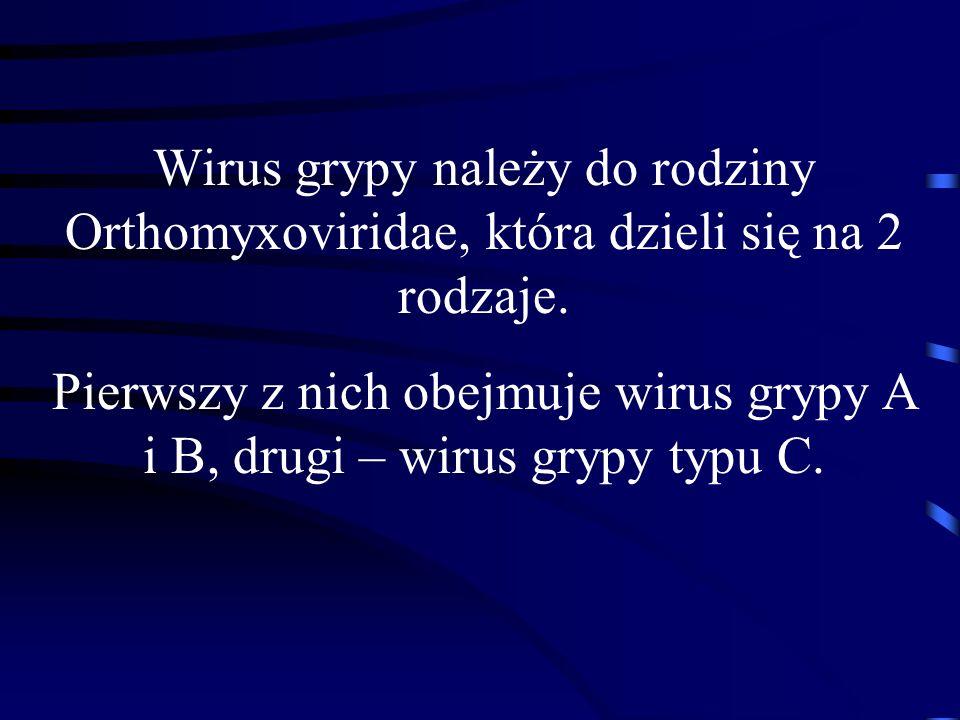 Wirus grypy należy do rodziny Orthomyxoviridae, która dzieli się na 2 rodzaje. Pierwszy z nich obejmuje wirus grypy A i B, drugi – wirus grypy typu C.