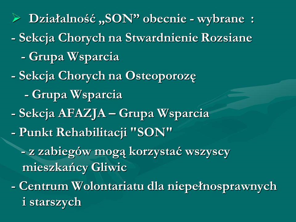 Stowarzyszenie SON – zagranicznie: w 1998r.