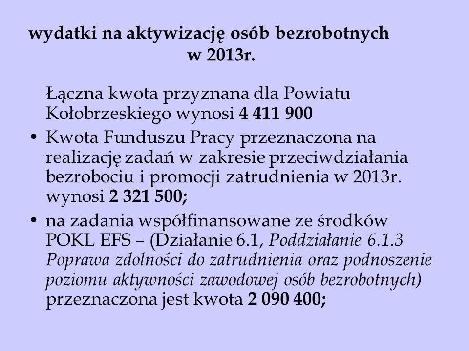 wydatki na aktywizację osób bezrobotnych w 2013r.