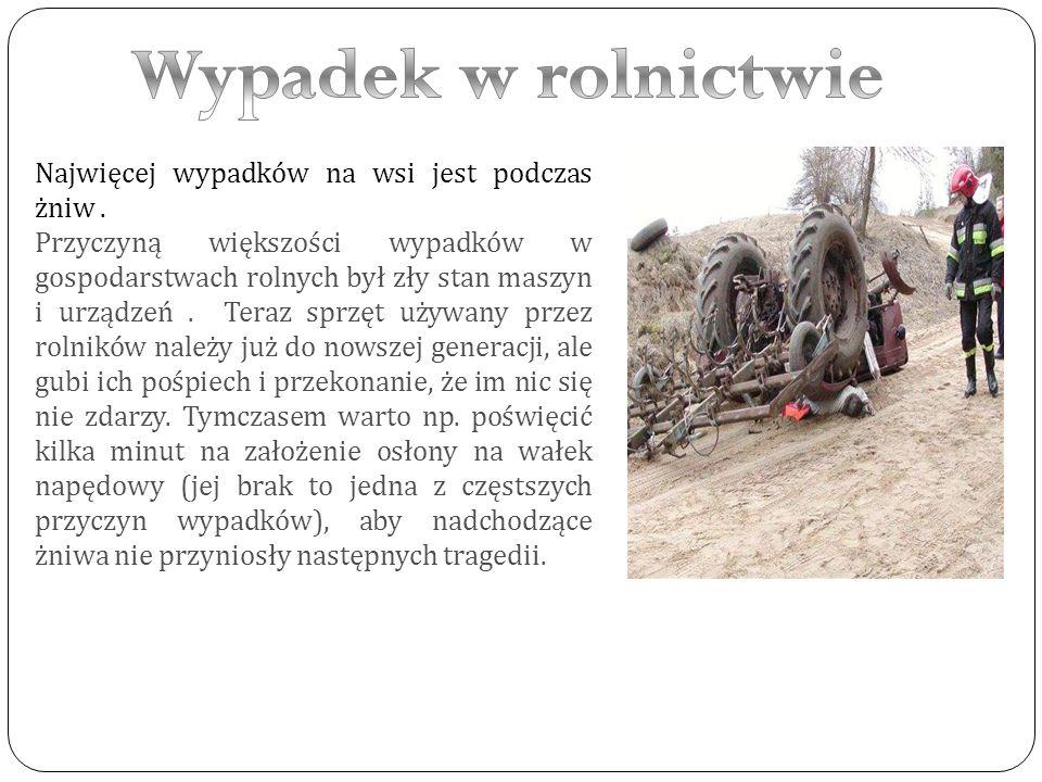 Ofiary wypadków na wsi, szczególnie w sezonie wakacyjnym, to często dzieci wykonujące prace związane z prowadzeniem gospodarstwa.