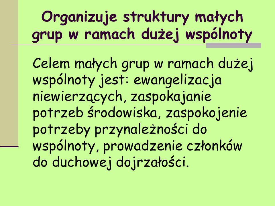 Organizuje struktury małych grup w ramach dużej wspólnoty Celem małych grup w ramach dużej wspólnoty jest: ewangelizacja niewierzących, zaspokajanie p