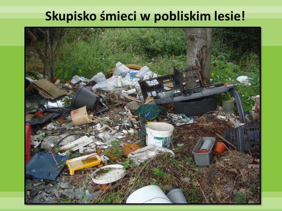 Skupisko śmieci w pobliskim lesie!