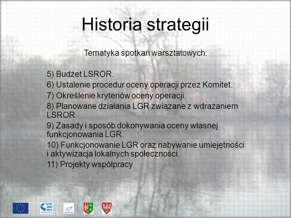 Historia strategii Konsultacje LSROR Najważniejszym celem konsultacji społecznych było przedstawienie LSROR jak największej liczbie osób z obszaru działania LGR, zapoznanie z treścią Strategii oraz wprowadzenie do dokumentu proponowanych zmian.