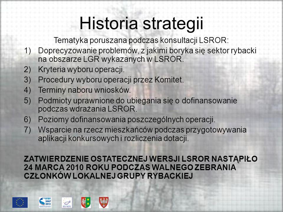 Historia strategii Tematyka poruszana podczas konsultacji LSROR: 1)Doprecyzowanie problemów, z jakimi boryka się sektor rybacki na obszarze LGR wykazanych w LSROR.
