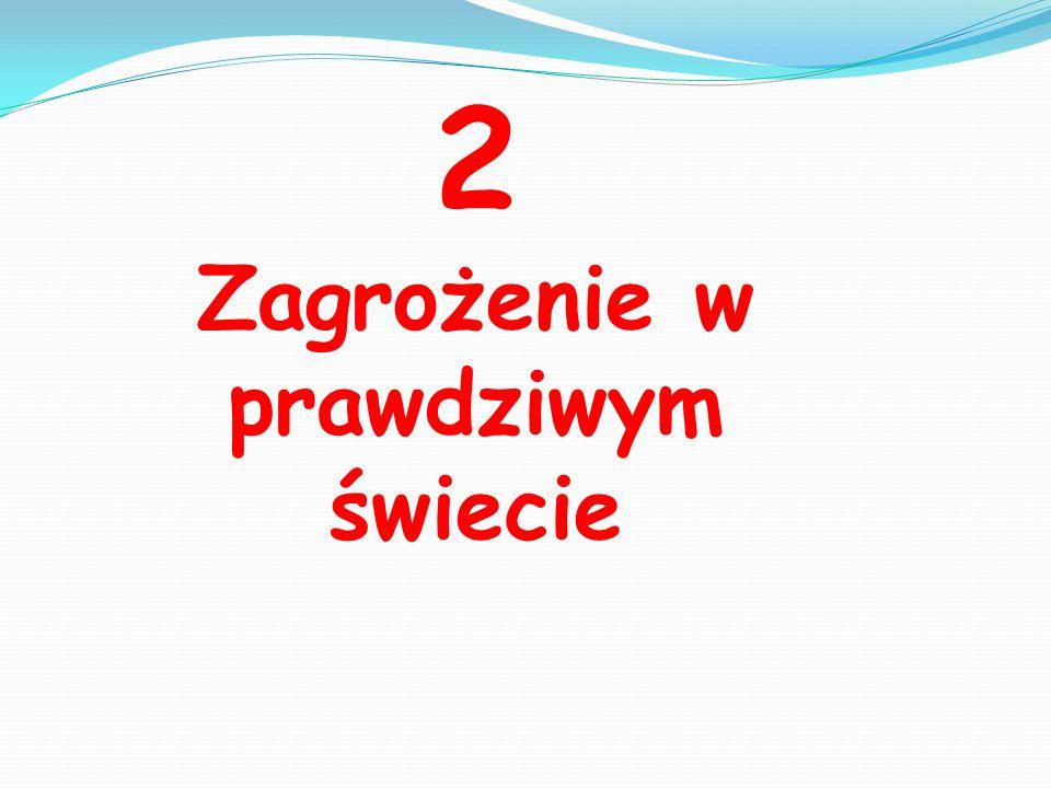 ŹRÓDŁA: http://images.google.pl/ http://www.dzieckowsieci.pl/ http://dbi.saferinternet.pl/dbi_wiadomosci http://www.helpline.org.pl/ http://www.fundacjagrupytp.pl/ http://www.sieciaki.pl/