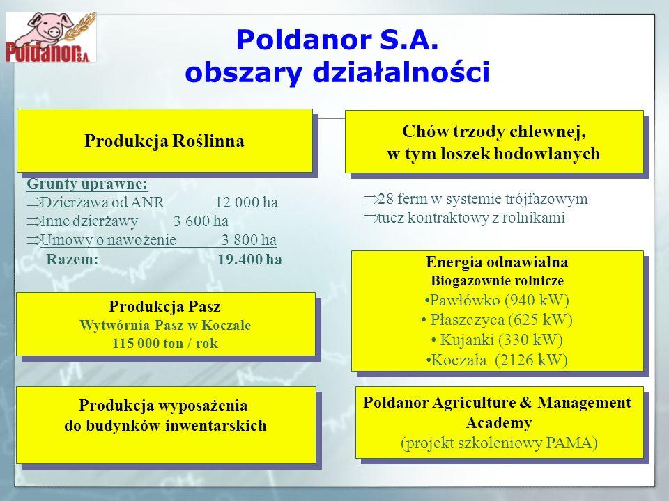 Poldanor S.A. obszary działalności Grunty uprawne: Dzierżawa od ANR 12 000 ha Inne dzierżawy 3 600 ha Umowy o nawożenie 3 800 ha Razem: 19.400 ha Prod